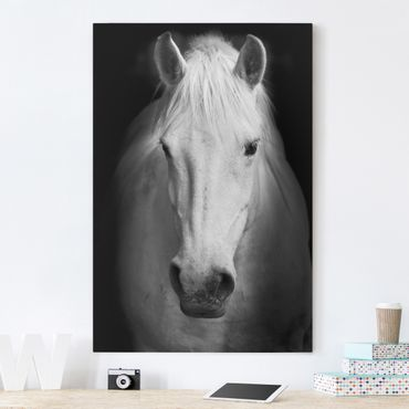 Leinwandbild Schwarz-Weiß - Dream of a Horse - Hoch 2:3