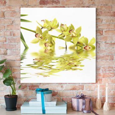 Leinwandbild - Elegant Orchid Waters - Quadrat 1:1