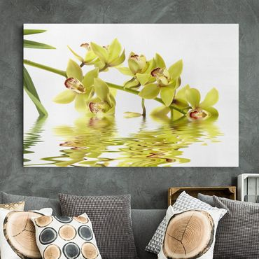 Leinwandbild - Elegant Orchid Waters - Quer 3:2