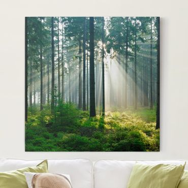 Leinwandbild - Enlightened Forest - Quadrat 1:1