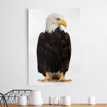 Leinwandbild - Eye of the Eagle - Hoch 2:3