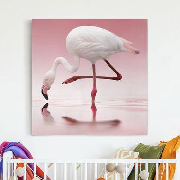 Leinwandbild - Flamingo Dance - Quadrat 1:1