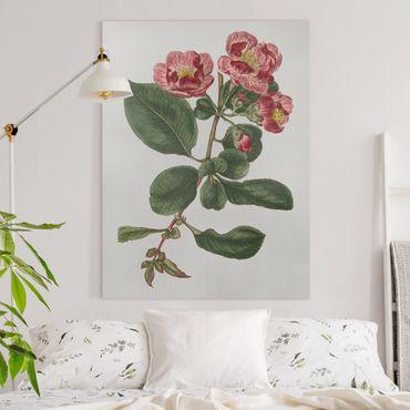 Leinwandbild - Florale Schmuckstücke I - Hochformat 4:3