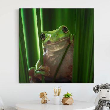 Leinwandbild - Fröhlicher Frosch - Quadrat 1:1