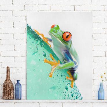 Leinwandbild - Frog - Hoch 3:4