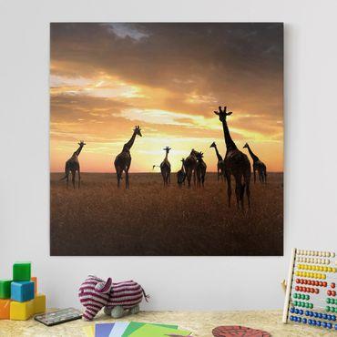 Leinwandbild - Giraffen Familie - Quadrat 1:1