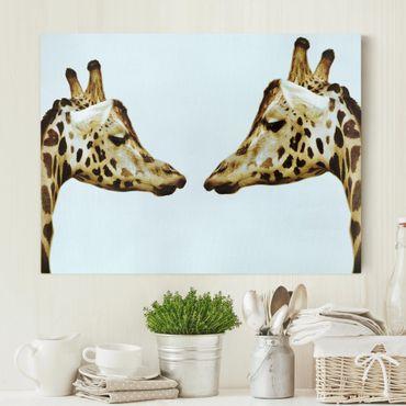 Leinwandbild - Giraffes in Love - Quer 4:3
