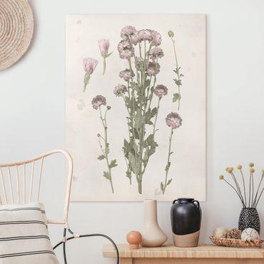 Leinwandbild - Herbarium in rosa I - Hochformat 4:3