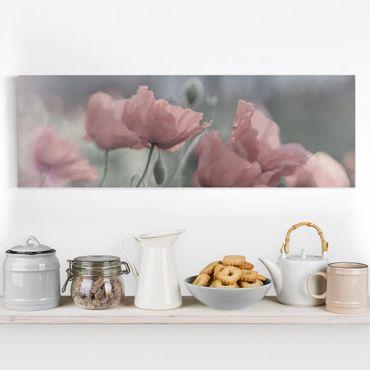 Leinwandbild - Malerische Mohnblumen - Panorama Quer