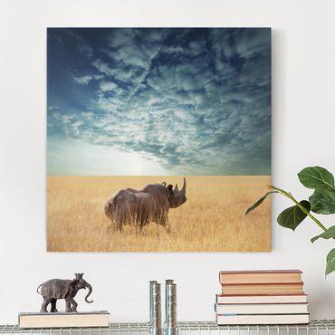 Afrika Leinwandbild Nashorn in der Savanne - Quadrat 1:1