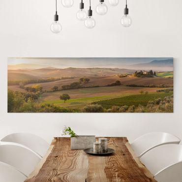 Leinwandbild - Olivenhain in der Toskana - Panorama Quer