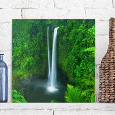 Leinwandbild - Paradiesischer Wasserfall - Quadrat 1:1