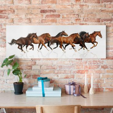 Pferde Leinwandbild - Pferdeherde - Panoramabild Quer