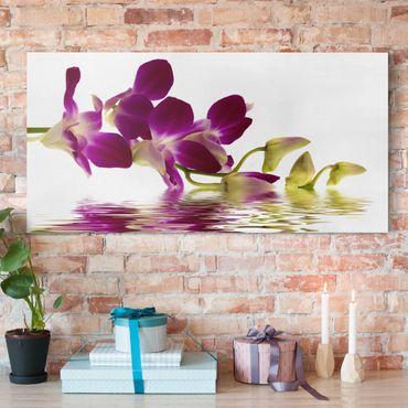Leinwandbild - Pink Orchid Waters - Quer 2:1