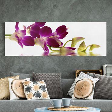 Leinwandbild - Pink Orchid Waters - Panorama Quer