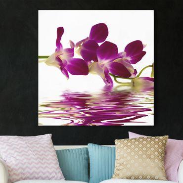 Leinwandbild - Pink Orchid Waters - Quadrat 1:1