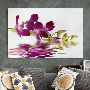 Leinwandbild - Pink Orchid Waters - Quer 3:2