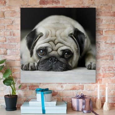 Leinwandbild Schwarz-Weiß - Pug Loves You - Quadrat 1:1