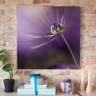 Leinwandbild - Pusteblume in Violett - Quadrat 1:1
