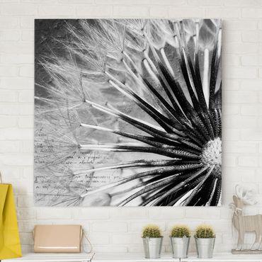 Leinwandbild - Pusteblume Schwarz & Weiß - Quadrat 1:1