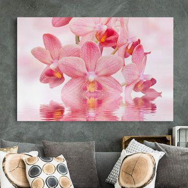 Leinwandbild - Rosa Orchideen auf Wasser - Quer 3:2