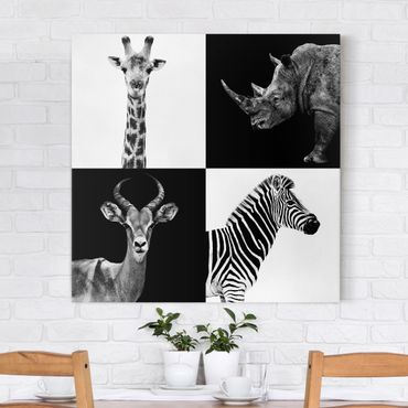 Leinwandbild Schwarz-Weiß - Safari Quartett - Quadrat 1:1