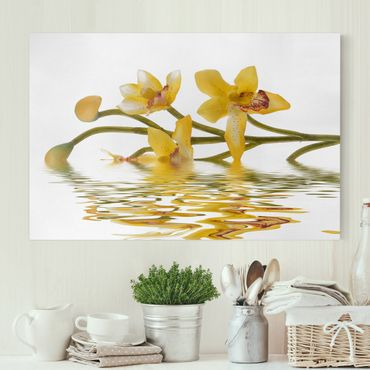 Leinwandbild - Saffron Orchid Waters - Quer 3:2