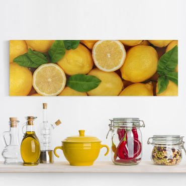 Leinwandbild - Saftige Zitronen - Panorama Quer