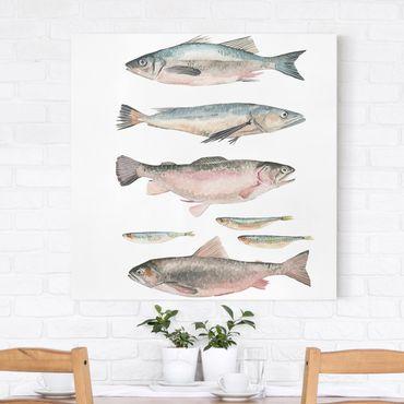 Leinwandbild - Sieben Fische in Aquarell I - Quadrat 1:1