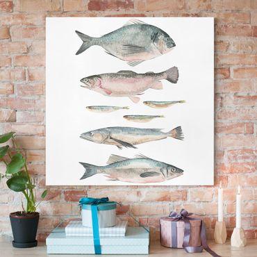 Leinwandbild - Sieben Fische in Aquarell II - Quadrat 1:1