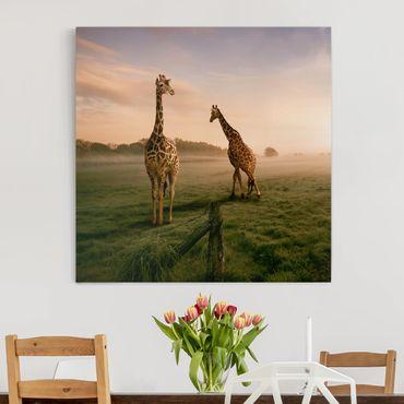 Leinwandbild - Surreal Giraffes - Quadrat 1:1