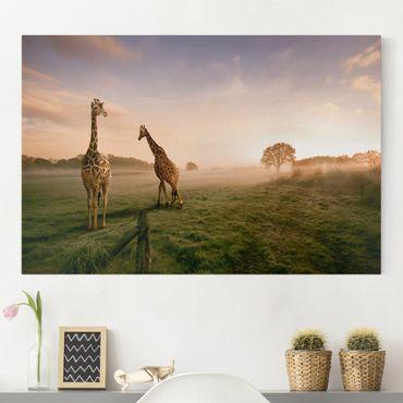 Leinwandbild - Surreal Giraffes - Quer 3:2