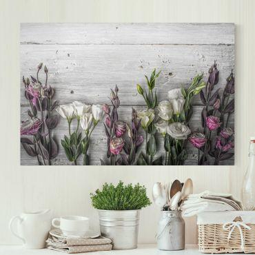 Leinwandbild - Tulpen-Rose Shabby Holzoptik - Quer 3:2