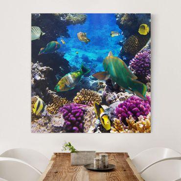 Leinwandbild - Underwater Dreams - Quadrat 1:1