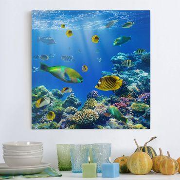 Leinwandbild - Underwater Lights - Quadrat 1:1