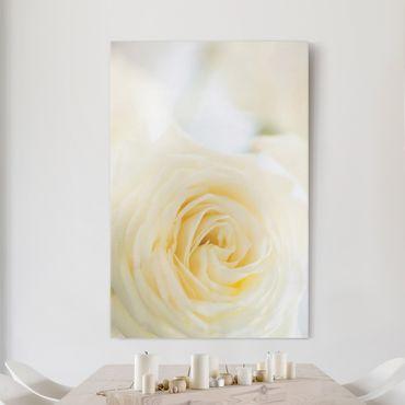 Leinwandbild - White Rose - Hoch 2:3
