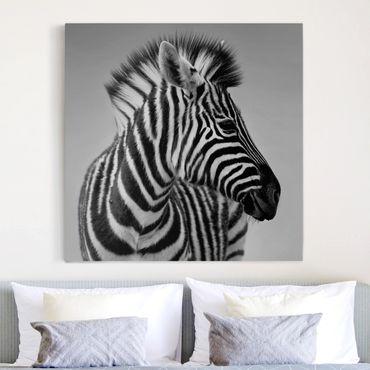 Leinwandbild Schwarz-Weiß - Zebra Baby Portrait II - Quadrat 1:1