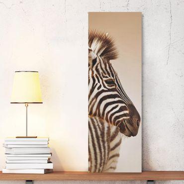 Leinwandbild - Zebra Baby Portrait - Panorama Hoch