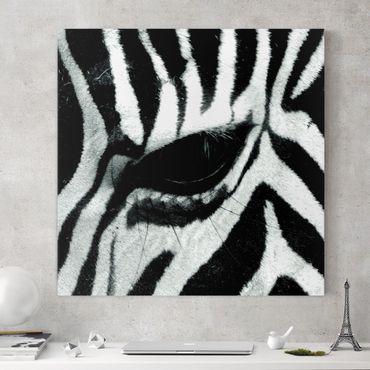 Leinwandbild - Zebra Crossing - Quadrat 1:1