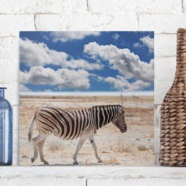 Leinwandbild - Zebra in der Savanne - Quadrat 1:1