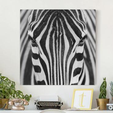 Leinwandbild - Zebra Look - Quadrat 1:1