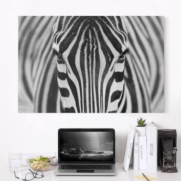 Leinwandbild - Zebra Look - Quer 3:2