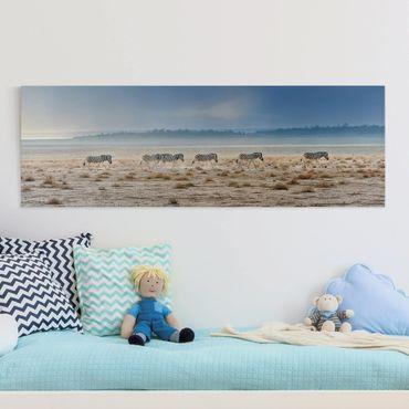 Leinwandbild - Zebra Promenade - Panorama Quer