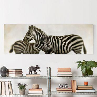 Leinwandbild Schwarz-Weiß - Zebrapaar - Panoramabild Quer