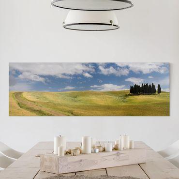Leinwandbild - Zypressen in der Toskana - Panorama Quer