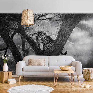 Metallic Tapete  - Leopard im Baum Schwarz-weiß
