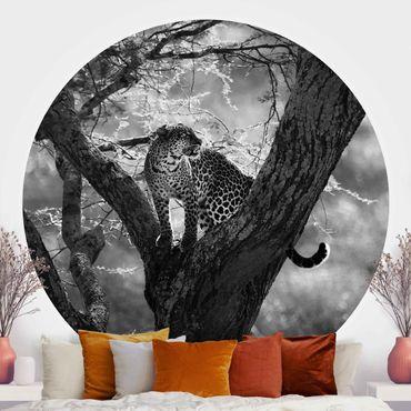 Runde Tapete selbstklebend - Leopard im Baum Schwarz-Weiß