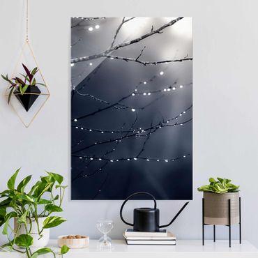 Glasbild - Lichttropfen am Birkenzweig - Hochformat