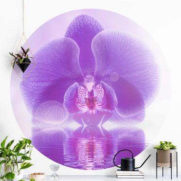 Runde Tapete selbstklebend - Lila Orchidee auf Wasser