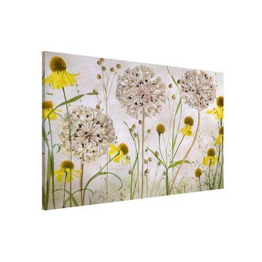 Magnettafel - Allium und Helenium Illustration - Memoboard Querformat